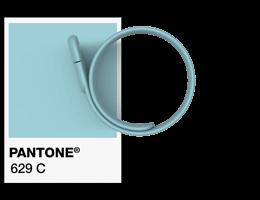 Pantone® Värikoodit  USB-muistiranneke
